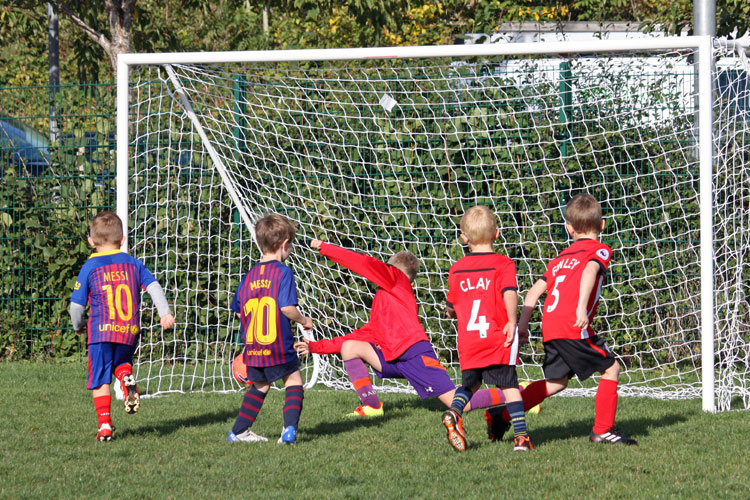 Totton & Eling Youth Mini Tigers